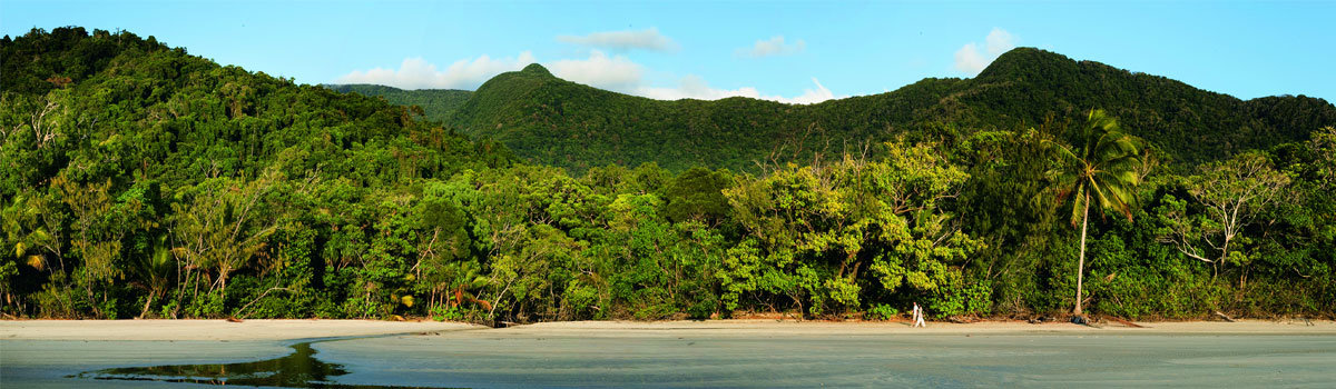 Daintree Rainforest & Cape Tribulation Rainforest Tours - Daintree Beach