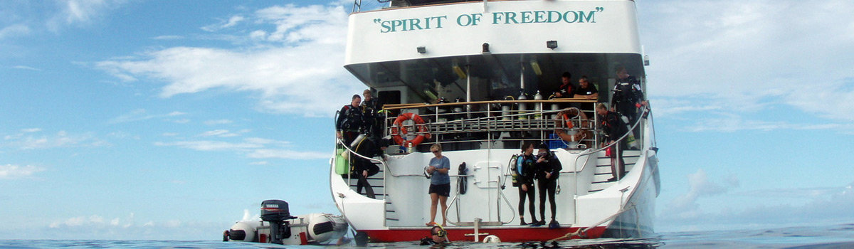 Great Barrier Reef Liveaboard Dive Trip,