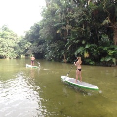 Stand Up Paddle Boarding | Mossman Gorge | Half Day Afternoon Activity Ex Port Douglas