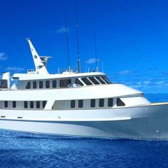 Stay 3,5,7 nights on luxury liveaboard dive tour Great Barrier Reef Australia