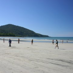 Stroll deserted beaches in Cape Tribulation