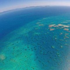 Sudbury Reef on the Great Barrier Reef in Australia