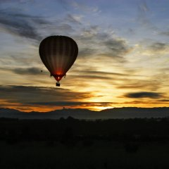 Sunrise Hot air balloon tours Cairns and Port Douglas