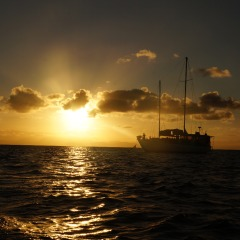 Scuba & Snorkel Overnight Tour | Sunset On The Great Barrier Reef | 2 Days 1 Nights Reef Trip | Small Groups