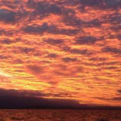Sunset Over the Great Barrier Reef - Afternoon Low Isles Sail