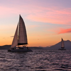 Sunset Sailing Cruise | Port Douglas | 1.5 hours