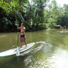 SUP On Mossman River | Small Group Afternoon Paddle Boarding Afternoon Tour
