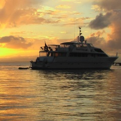 Superyachts - Discover the Great Barrier Reef on a private charter boat on sunset