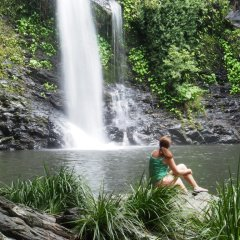 Swim at Cassowary Falls