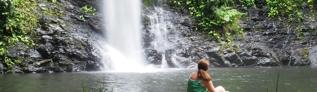 Half Day Tour From Port Douglas In Tropical North Queensland To Cassowary Falls & Daintree River