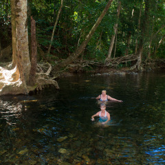 Swim in crystal clear mountain streams in the Daintree Rainforest - Emmagen Creek