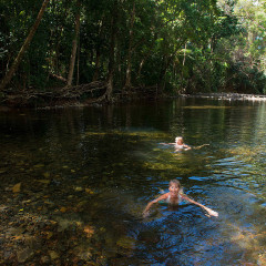 Swim in Emaggen Creek on Daintree Rainforest tour