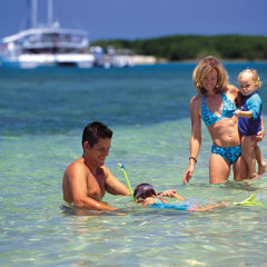 Families can swim in the shallow waters in safety on Low Isles on this day tour