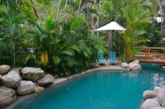 Swimming Pool set amongst Tropical Gardens - Port Douglas Coral Apartments