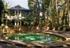 Swimming Pool & Spa heated in Winter months and surrounded by majestic Melaleuca Paperbark trees