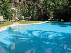 Swimming Pool | Tranquility Holiday Apartments Palm Cove