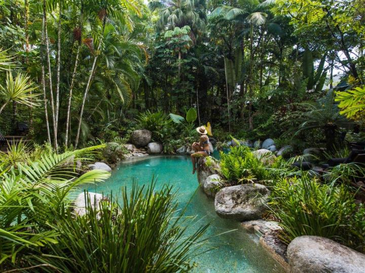Swimming Pool with tropical gardens - Silky Oaks Lodge