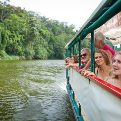 Take a cruise down the mighty Daintree River