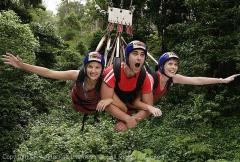 Take a ride on a Minjim swing from Port Douglas