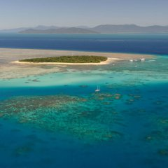 Take a scenic helicopter flight out to Green Island and go snorkelling