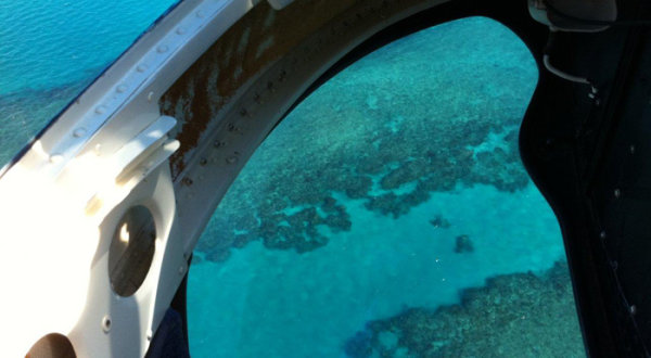 Take fantastic photos of the Great Barrier Reef from the seat of your helicopter