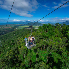 Take the open top Skyrail Gondola down from the Kuranda Village