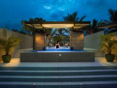 Terrace Apartment Private Plunge Pool