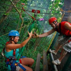 Test Your Loved One | Zip Lining Through The Rainforest | Day Trip Easily Accessible From Port Douglas North Queensland