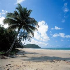 The Best 2 Day Daintree Cape Tribulation Package | Cape Tribulation Beach
