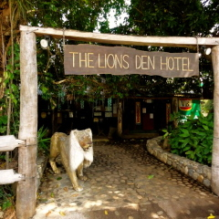 The Famous Lions Den Hotel - 3 Day Cooktown 4WD Tour