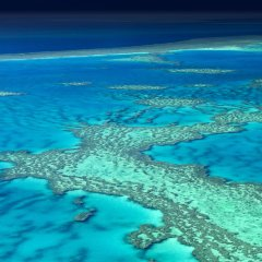 Great Barrier Reef seen from above | Helicopter Scenic Flights Port Douglas