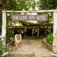 The Lions Den Hotel On Private Charter Tour to Cooktown