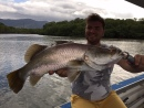 More information aboutCairns Fishing Tours | Estuary & River Fishing | Shared & Private | Full & Half Day