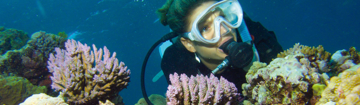 Most Popular Tours of Tropical North Queensland Australia - scuba diver Great Barrier Reef