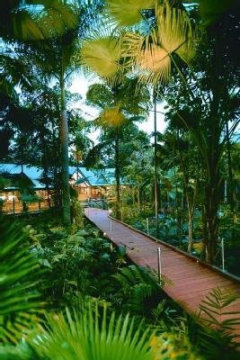 The pathway leading to the Main House of the Daintree Rainforest Resort