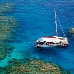 The perfect small boat for a Great Barrier Reef tour