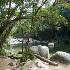 There are somany beautiful spots along the Mossman Gorge River