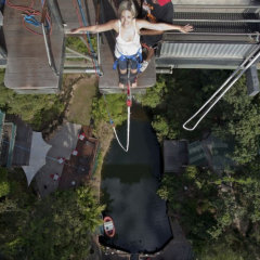 This is an OMG Cairns Bungy Jumping view