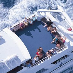 Sun yourself on the top deck of this high speed catamaran reef trip cruise boat