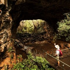 Tour guide at Undara Lava tubes