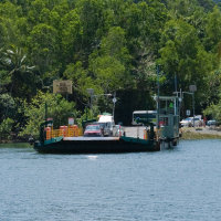 Travel across the mighty Daintree River by barge