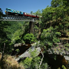 Travel by the fully restored Kuranda train to the top of the mountain