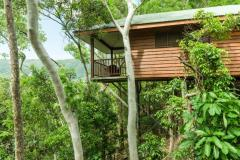 Treehouse style accommodation with Rainforest or Ocean views - Thala Beach Nature Reserve 10minutes from Port Douglas