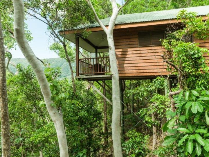 Eco Resorts Cairns - Luxury Eco Treehouse style accommodation with Rainforest or Ocean views - Thala Beach Nature Reserve