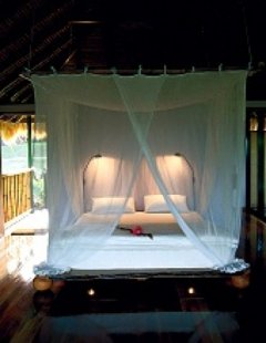 Treehouse Bedroom - Cockatoo Hill Retreat Daintree