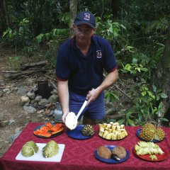 Tropical Fruit Tasting on Daintree Rainforest tour