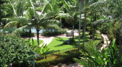 Tropical Gardens - Cairns Beach Resort