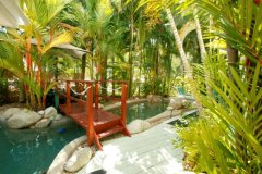 Tropical Gardens surround the Swimming Pool - Port Douglas Coral Apartments