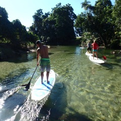 Tropical North Queensland Paddle Boarding | Departs From Port Douglas | Clear Waters Of Mossman River