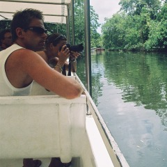 Tropical North Queensland Wildlife Spotting On Daintree River Cruise | Included In 2 Day Package